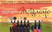 Logo Melgarajo